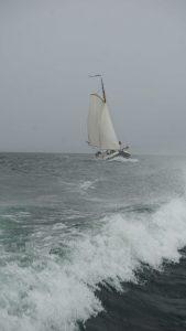 Friesisches Segelboot Seewiefke auf dem Untersee 4 -klein
